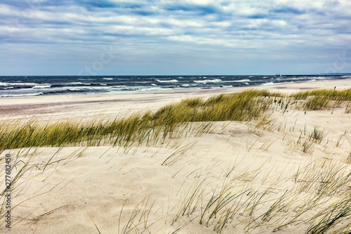 Obraz Grassy dunes and the Baltic sea at sunset - fototapety do salonu