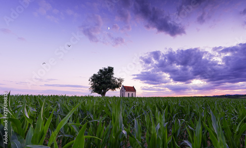 Fotografie, Tablou sunset panorama with chapel in the field