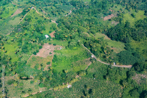 Poster Fleur agriculture aerial in the jungle of Dominica