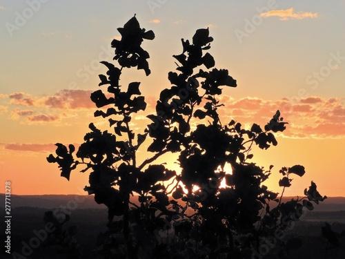 Valokuva  Sunset view of Bom Jardim Village, Nobres, Mato Grosso, Brazil