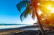 Leinwandbild Motiv Sunset in Grande Anse beach in Guadeloupe