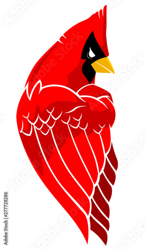 Valokuva  Cardinal Bird Mascot Side View