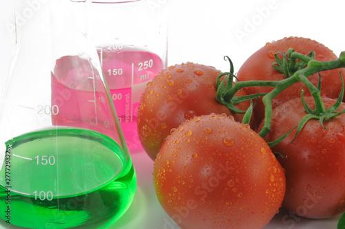 Tomaten mit Laborkolben Canvas Print