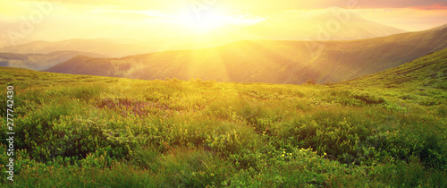 Photo sur Toile Miel Mountains landscape in the summer