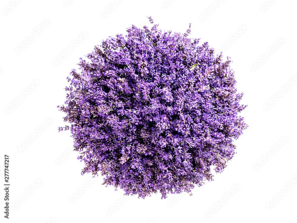 Fototapety, obrazy: Little planet lavender