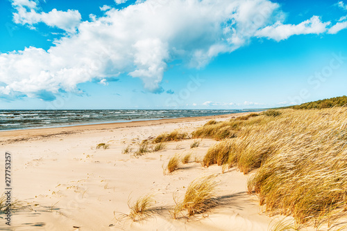 Obraz Beautiful seascape, spikelets on the background of a sandy beach sky with clouds and cold sea, Baltic Sea - fototapety do salonu