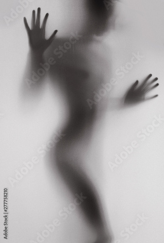 Fototapety, obrazy: female body silhouette conceptual shadow clearance white