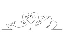 Continuous Line Drawing Of Two Beautiful Swans Gliding Together