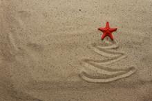 Christmas Tree With Starfish  ...