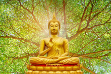 Golden Buddha Image Under The Bodhi Leaf, Natural Background