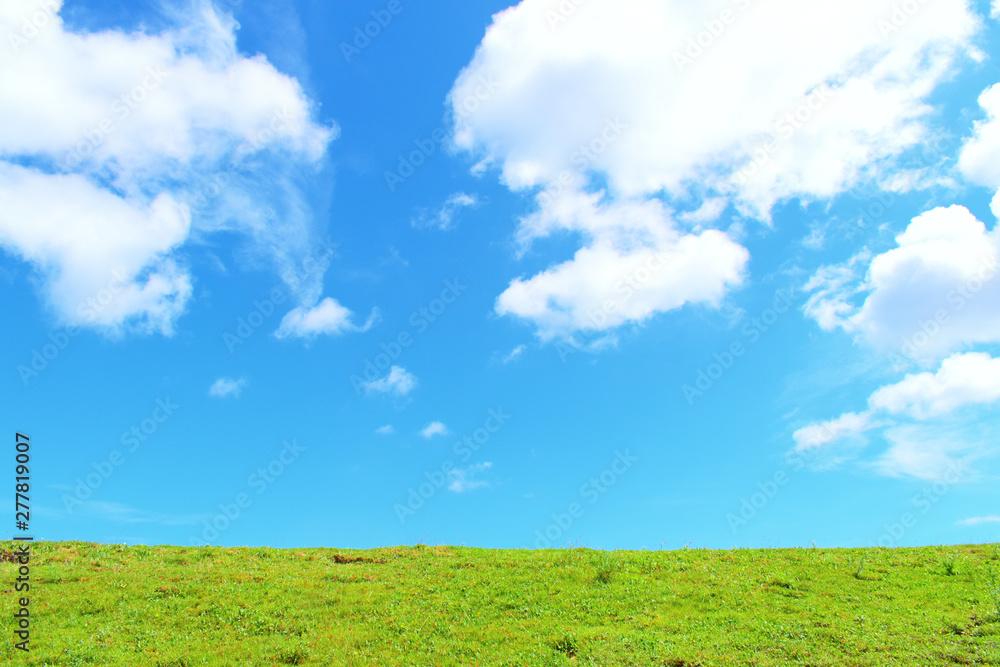 Fototapety, obrazy: 青空と草原