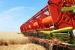 Leinwandbild Motiv Getreideernte mit Mähdrescher