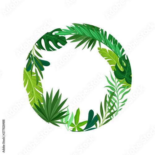 Valokuvatapetti Round frame of leaves. Vector illustration on white background.
