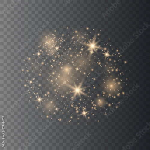Obraz Sparkling magical dust particles.  - fototapety do salonu