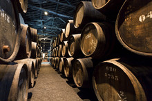 Underground Of The Traditional Winery With Dark Wine Cellar Gallery And Numbers Of Wooden Barrels For Port Wine