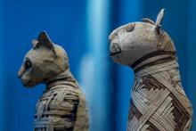 Mummified Cat Mummy Egyptian In A Pyramid Tomb