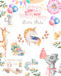 Watercolor isolated cute watercolor unicorn and sqirrel clipart. Nursery unicorns illustration. Princess unicorns poster. Trendy pink cartoon horse. Birthday invite.