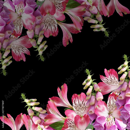 Beautiful floral background of digitalis and alstroemeria. Isolated