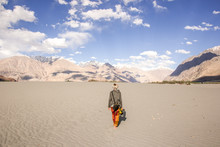 A Woman Traveler Walking Through A High Alltitude Desert In Nubra Valley, Ladakh, India. Great Mountains And Blue Sky In The Background. Model Photographed From Behind.