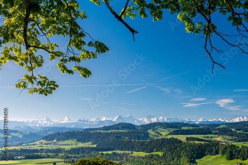 Aussicht vom Emmental Richtung Berner Alpen Slika na platnu