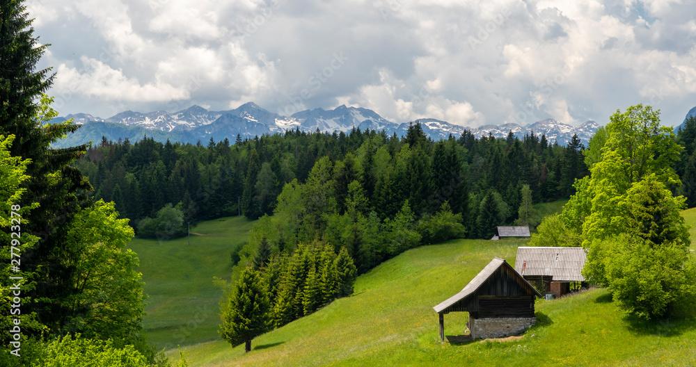 Fototapety, obrazy: Triglavski national park near Bohinj lake, Slovenia