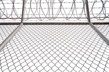 Texture The Cage Metal Net Isolate On White Background. Fence With Barbed Wire