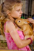 Lovely Child Holding Reddish R...
