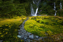 Wilderness Scene With Waterfalls And Yellow Flowers In New Zealand