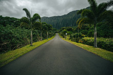 Botanical Garden Road
