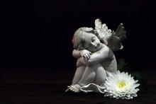 Angel And White Flower On Dark Background