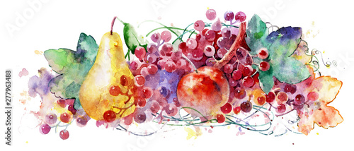 Beautiful watercolor fruit on a white background. Beautiful ripe fruits. Colorful illustration.