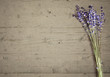Lila Lavendel auf hellem Holzbrett als Vorlage