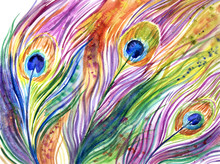 Rainbow Peacock Feathers, Abstract Watercolor Painting, Expressive Background, Illustration.
