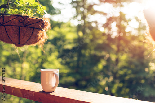 Hanging potted plant with bokeh background on porch of house with sunrise sun an Fototapeta