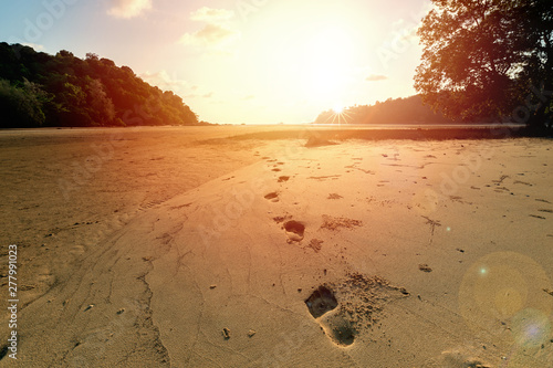Footsteps in sand beach..Deep bare footprint on low tide beach toward the sea at sunset with sunray and lens flare. #277991023