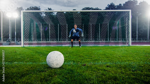 Shot of a Football Ball on a Grass during Penalty on Championship Fototapete