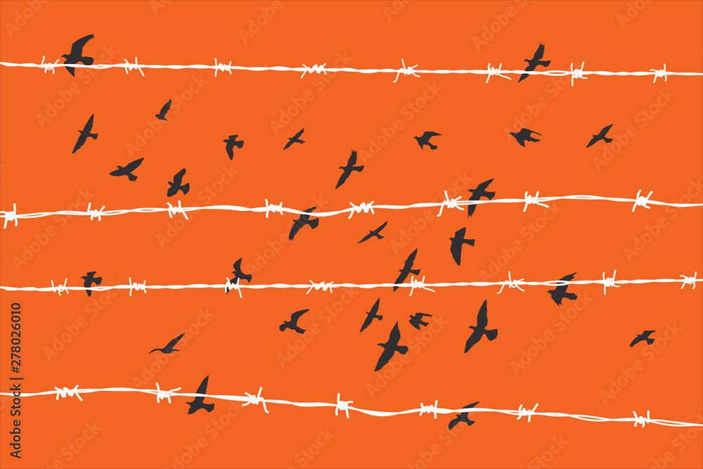 Fototapeta birds flying over broken barbed wire