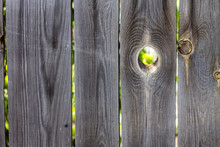 Beautiful Smooth Fence With A Hole In It, Through Which You Can See The Foliage Of Trees