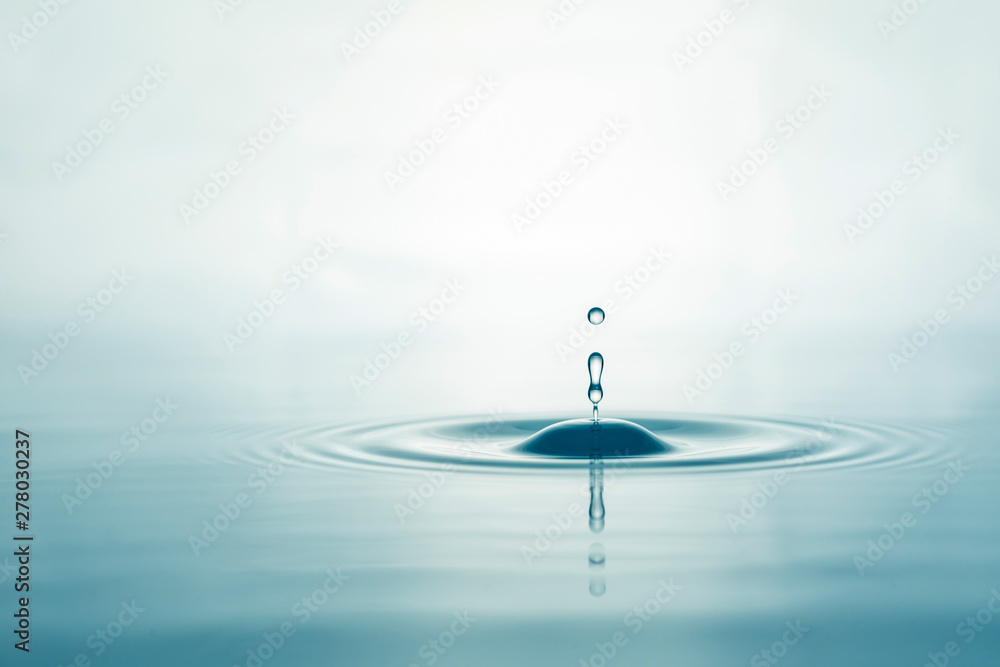 Fototapety, obrazy: Water droplets on surface water background