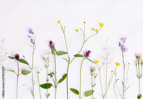 Poster Fleur Floral pattern with wildflowers, green leaves, branches on white background. Flat lay, top view.