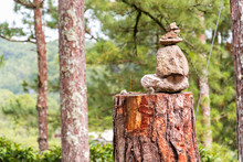 Rock Balancing On Top Of Tree Stump