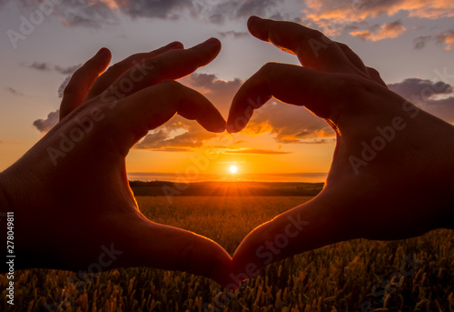 Poster Brown Hands in the shape of heart against the sunset over the wheat field.
