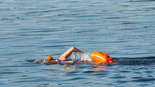 Swimmer Training In The Blue W...