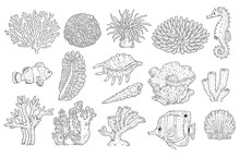 Vector Underwater Plants Corals Fish Shell Set
