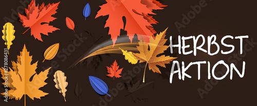 Fototapeta  Herbstaktion Banner Hintergrund - Herbst Aktion