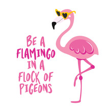 Be A Flamingo In A Flock Of Pi...
