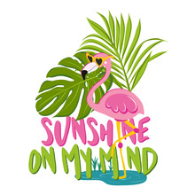 Sunshine On My Mind - Motivational Quotes. Hand Painted Brush Lettering With Flamingo. Good For T-shirt, Posters, Textiles, Gifts, Travel Sets.