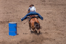 Barrel Racing At A Rodeo, A Cowgirl Rides A Roan Colored Horse Has Rounded A Barrel And Is Headed To The Finish. Her Legs Are Out In The Stirrups. The Dirt Is Flying As The Horse Digs In For Speed.