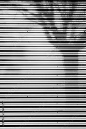 Montage in der Fensternische Darknightsky Shadow of a tree
