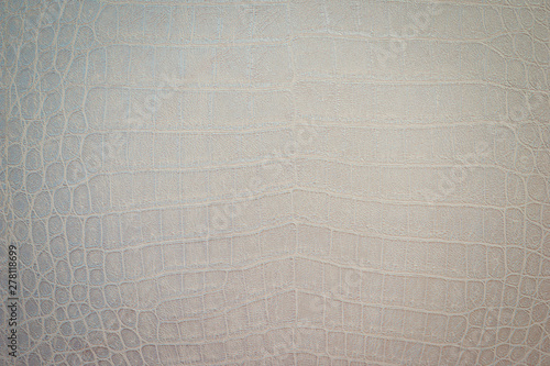 Cadres-photo bureau Crocodile Texture of python skin close-up. Snake or crocodile skin painted in a light color.